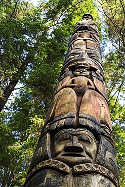 Mosquito Legend Pole, Tlingit totem pole, rainforest, summer, Sitka National Historic Park, Sitka, Baranof Island, Alaska, United States of America, North America
