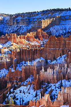 Hoodoos and snowy rim cliffs lit by late afternoon sun, winter, near Sunrise Point, Bryce Canyon National Park, Utah, United States of America, North America