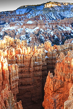 Hoodoos lit by late afternoon sun with snow, from Rim Trail near Sunset Point, Bryce Canyon National Park, Utah, United States of America, North America