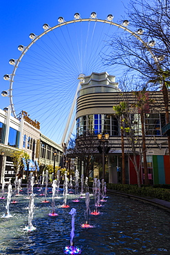 High Roller Observation Wheel, the world's largest, and fountains, LINQ development, Las Vegas, Nevada, United States of America, North America