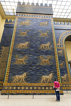 Visitor reads information sign, Ishtar Gate (Babylon), Pergamonmuseum (Pergamon Museum), Museum Island, Berlin, Germany, Europe