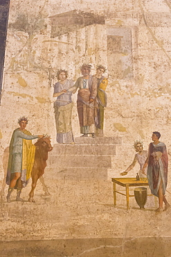 Panel painting, from The House of Jason, Pompeii, displayed at National Archaeological Museum, Naples, Campania, Italy, Europe