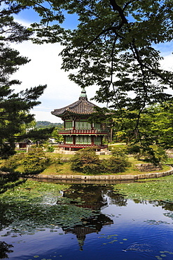 Hyangwonjeong, hexagonal pavilion reflected in water lily filled lake in summer, Gyeongbokgung Palace, Seoul, South Korea, Asia