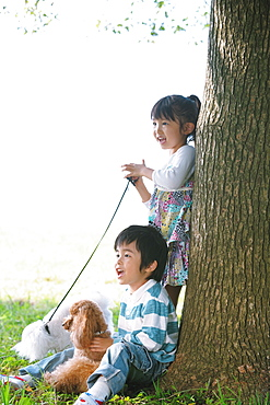 Girl and Boy with Poodle Dog near Tree Trunk