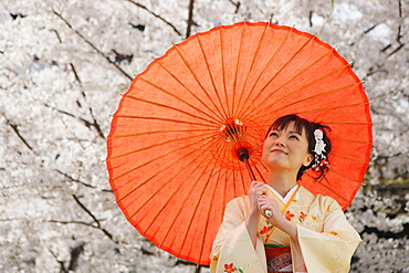 Woman Dressed in Kimono Standing Holding Parasol