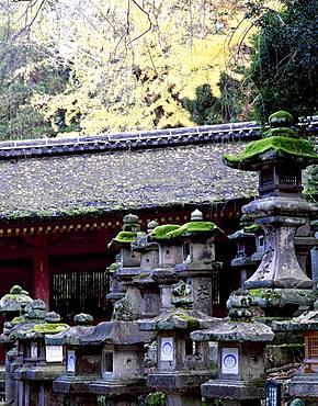 Kasuga Taisha, Nara, Japan
