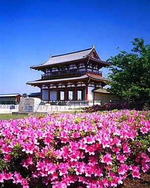 Heijo Palace, Nara, Japan