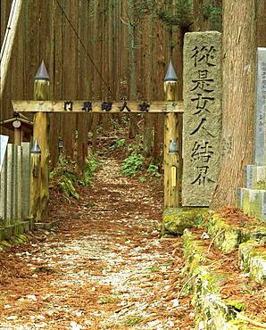 Kumanokodo, Wakayama, JapanNara, Japan