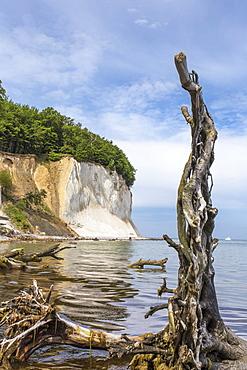 A view of the chalk cliffs at the Jasmund National Park on Rügen