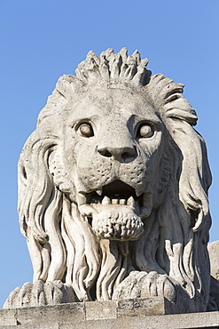 A lion statue on the Chain Bridge, Budapest, Hungary
