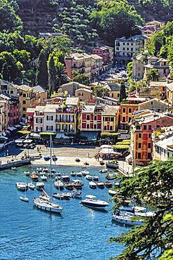 The harbour at Portofino, Liguria, Italy