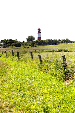 View of green pasture with Falshofter lighthouse, Schleswig-Holstein, Germany