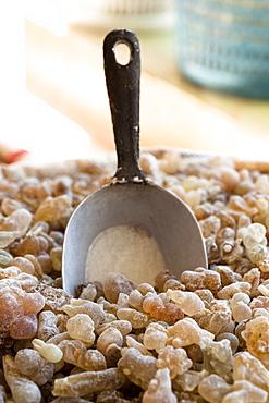 Close-up of dried incense resin with spatula in Salalah, Dhofar, Oman