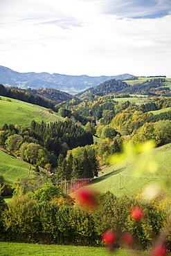 View of landscape between St Margen and St Peter in Freiburg, Germany