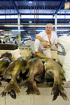 Fishmonger in Belem fish market in the Amazon, Para, Brazil, South America