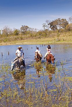 Tourists in the Pantanal wetlands, Mato Grosso do Sul, Brazil, South America