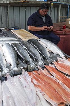 The fish market in Castro, Chiloe, Patagonia, Chile, South America