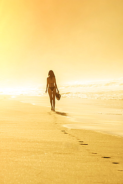 Young Brazilian (Latin American) (Latina) woman in golden dawn light on the beach in a bikini, Rio de Janeiro, Brazil, South America