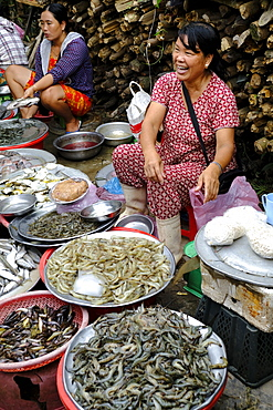 A Vietnamese woman laughing at a market near Hue, Vietnam, Indochina, Southeast Asia, Asia