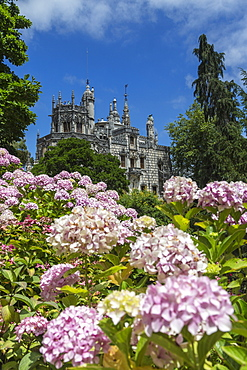 Flowers frame old mystical buildings of Romanesque Gothic and Renaissance style, Quinta da Regaleira, Sintra, Portugal, Europe