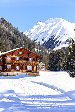 Typical wooden hut framed by woods and snowy peaks, Langwies, district of Plessur, Canton of Graubunden, Swiss Alps, Switzerland, Europe