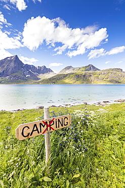 Green meadows and flowers frame the turquoise sea surrounded by peaks, Strandveien, Lofoten Islands, Norway, Scandinavia, Europe