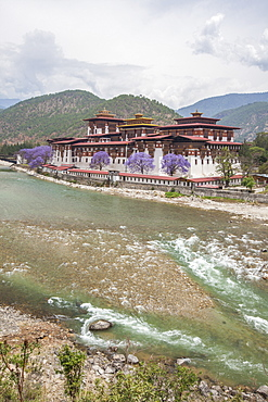 The Punakha Dzong (Pungtang Dechen Photrang Dzong) is the administrative centre of Punakha District in Punakha, Bhutan, Asia