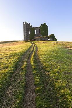 Grass fields around Ballycarbery Castle, Cahersiveen, County Kerry, Munster, Republic of Ireland, Europe