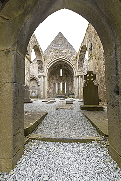 Ruins of the Cistercian Corcomroe Abbey, The Burren, County Clare, Munster, Republic of Ireland, Europe