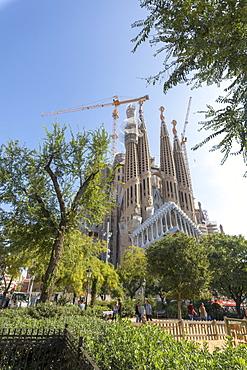 Sagrada Familia Cathedral, UNESCO World Heritage Site, Barcelona, Catalonia, Spain, Europe
