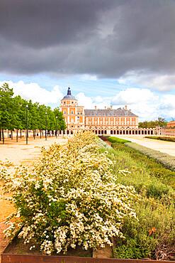 Ornamental plants, Royal Palace of Aranjuez (Palacio Real), Community of Madrid, Spain