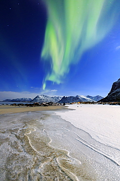 Northern Lights (aurora borealis) on Gymsoyan sky, Gimsoy, Lofoten Islands, Arctic, Norway, Scandinavia, Europe