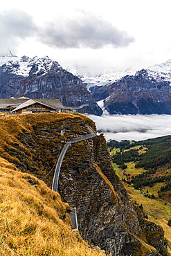 Elevated metal walkway on mountain ridge known as Cliff Walk by Tissot, First, Grindelwald, Bernese Alps, Canton of Bern, Switzerland, Europe