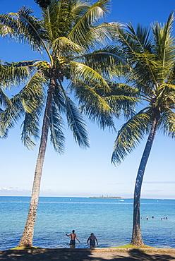 Palm trees, Anse Vata beach, Noumea, New Caledonia, Pacific