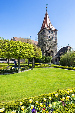 Castle gardens of the imperial castle of Nuremberg, Bavaria, Germany, Europe