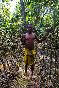 Pygmy man on a hand made vine bridge in the Dzanga-Sangha Park, UNESCO World Heritage Site, Central African Republic, Africa
