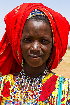 Colourfully dressed woman travels with a caravan of Peul nomads and their animals in the Sahel of Niger, West Africa, Africa