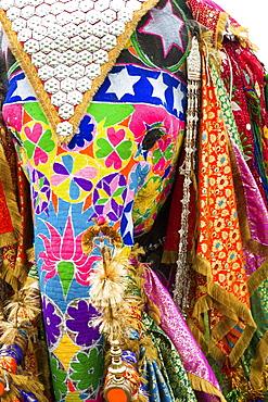Colorful elephants at the Jaipur elephant festival, Jaipur, Rajasthan, India, Asia