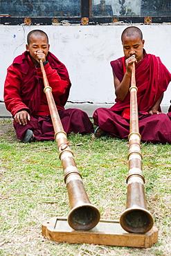 Monks playing Dungchen trumpet, Punakha, Bhutan, Asia