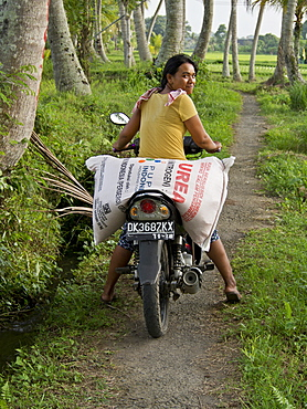 Woman carrying sack of rice on motorcycle in the highlands in Bali, Indonesia, Southeast Asia, Asia