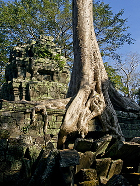 Angkor Wat Archaeological Park, UNESCO World Heritage Site, Siem Reap, Cambodia, Indochina, Southeast Asia, Asia