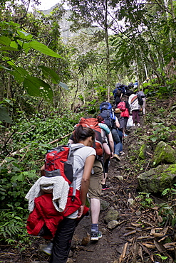 Travellers walking the Inca Trail path to the Inca ruins of Macchu Picchu, Peru, South America