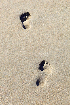 foot print on sandy beach, Sutherland, Scotland