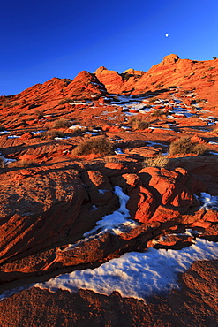 Coyote buttes north, sandstone formed by wind and water, paria wilderness area, arizona, usa