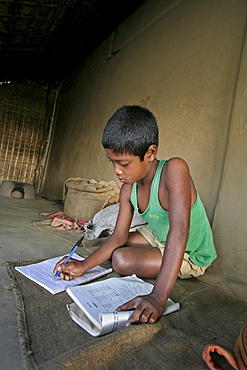 Bangladesh 11, year, old homar ritchil doing his school homework, he is a member of the garo tribal minority, haluaghat, mymensingh region