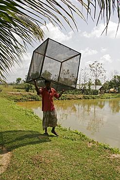 Bangladesh man carrying boxed net, fish hatchery employing scientific methods at haluaghat, mymensingh region