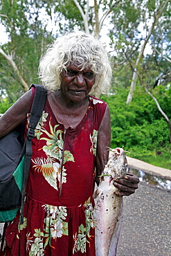 Australia. Older aborigine woman who jhas just caught a catfish, aborigine community of , or beswick, arnemland, northern territory. 2007