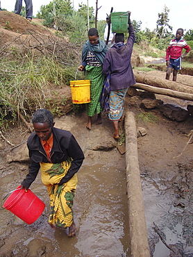 Tanzanian women collecting unsafe and dirty drinking water from a water hole at kansay, near ngorongoro. They will carry the bucket of water upto 3 miles each way to and from their homes.They And their families suffer from parasites and intestinal complaints because of the contaminated water