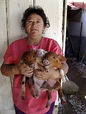 Honduras woman with piglets. These were provided by a project to raise nutrition levels in the rural areas. Marcala