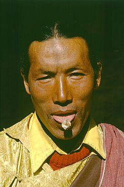 11th generation practicing amchi tsampha ngawang shows dragon bone used treating broken bones sticks to tongue. He treats patients throughout kali gandaki region is very active with training other amchis from over tibet, nepal mongolia